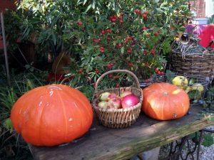 Kürbis und Äpfel im Marme-Lädle